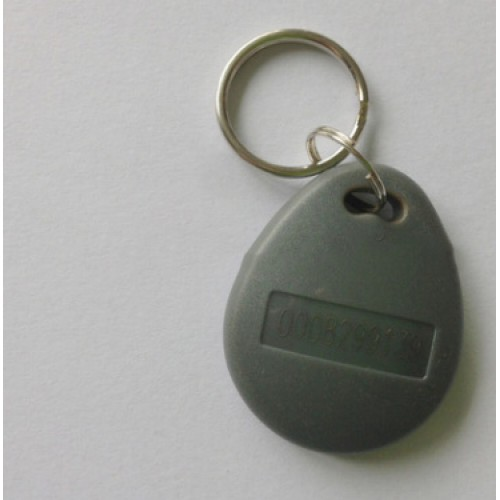 RFID Ключодържател/чип, 125kHz